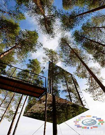 TreeHotel hotel on the tree