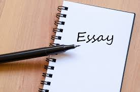 What is an essay genre
