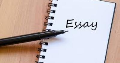 What is an essay and how to write it?